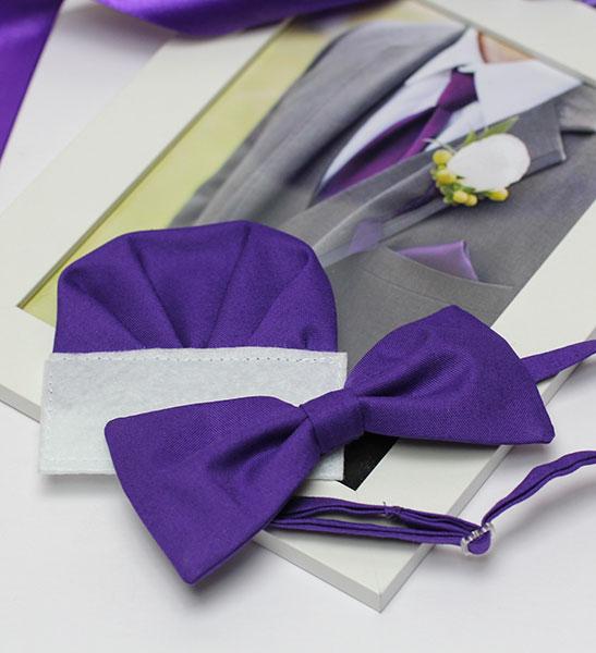 Галстук-бабочка (фиолетовый)