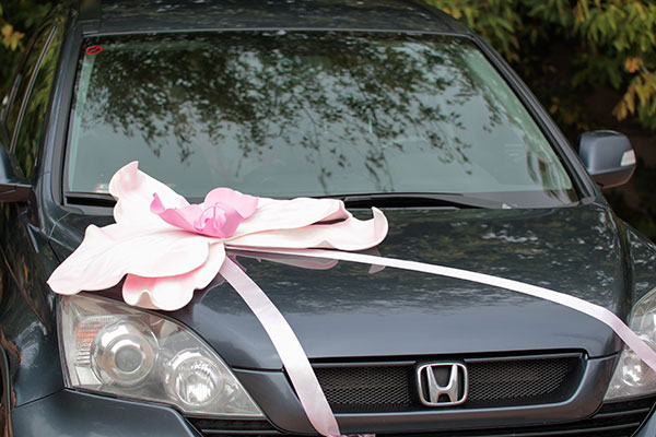 Большая орхидея для украшения машины