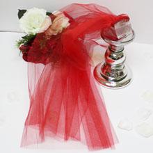 Фата для девичника (красная)