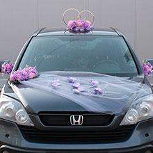 Набор свадебных украшений на машину Поцелуй бабочки № 2