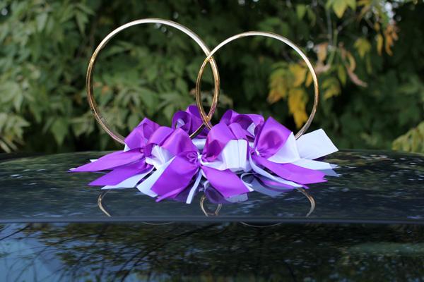 Кольца для авто Фантазия (бело-фиолетовый)