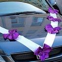 бело - фиолетовый