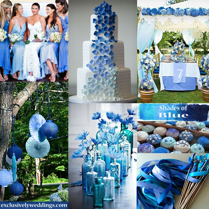 Фото свадьбы в синим цвете